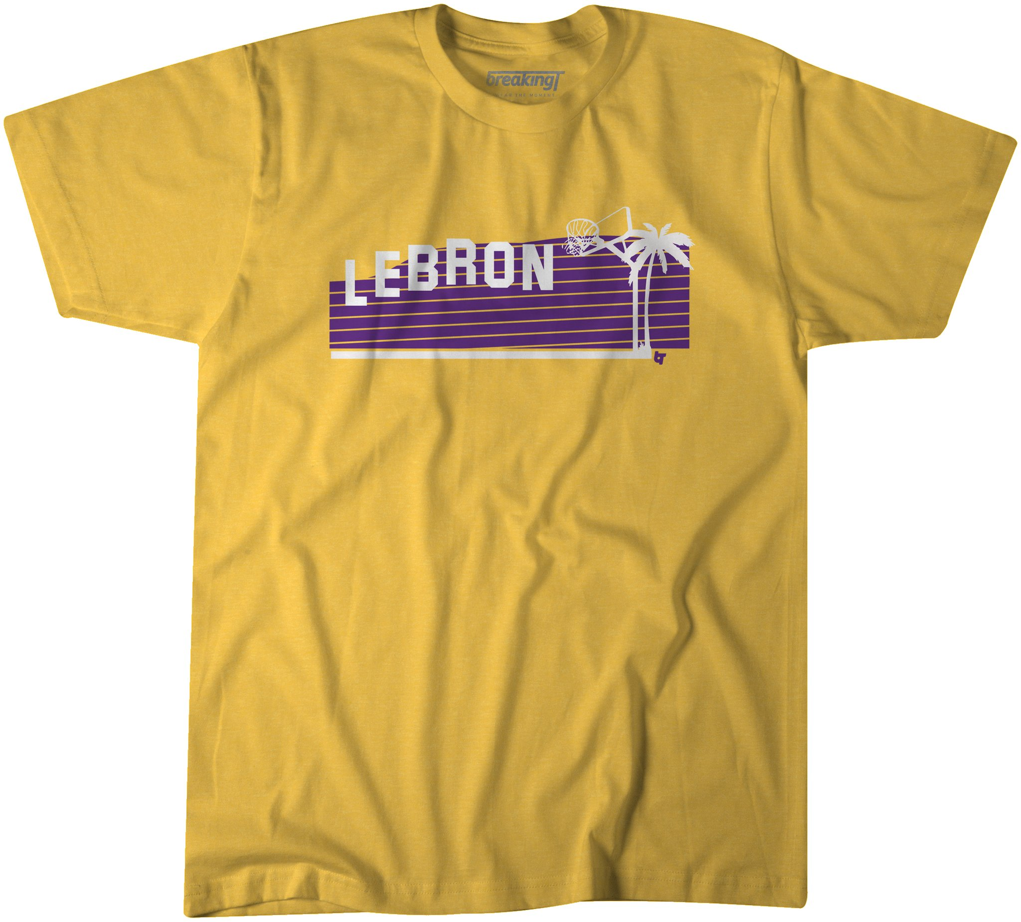 Lebron T Shirt Los Angeles Lakers fans need this LeBron James Hollywood t-shirt